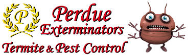 Exterminators | Pest Control | Roanoke VA