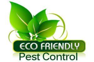 Termite Treatment Roanoke